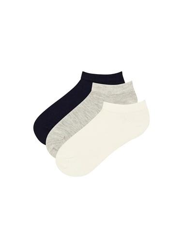 Penti 3'lü Çorap Renkli